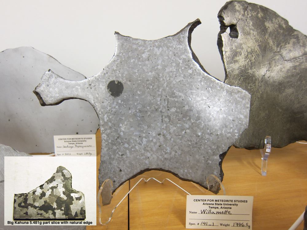 Photo of the ASU Center for Meteorite Studies Willamette collection piece of a 1,786.5g full slice
